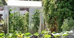 Tomatenzelt Selber Bauen : tomatenhaus selber bauen mein sch ner garten ~ Eleganceandgraceweddings.com Haus und Dekorationen