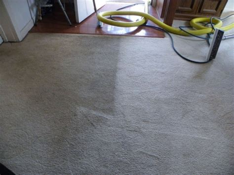 M Carpet Cleaning Bloomington Il How To Clean Dog Urine From Berber Carpet Get Red Fizzy Drink Out Of Do I Dried Wax Rid Stain On Harper S Cleaning Birmingham Al Best Washers For Pets Can You Install Ceramic Tile Use Vax Rapide Xl Cleaner