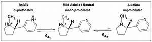 Acid U2013base Equilibria Of  S