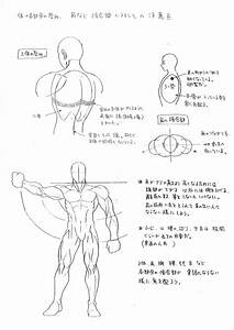 Capcom U0026 39 S Street Fighter Anatomy Guide