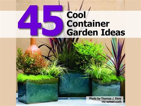 ideas container 45 cool container garden ideas
