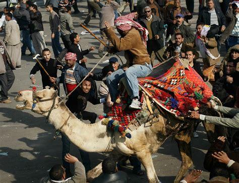 camel horse camels vs egypt hondros revolution chris square cairo thugs tahrir mubarak hosni battle president