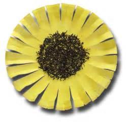 Paper Plate Sunflower Craft