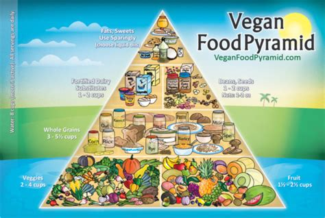 balance cuisine pro vegan food pyramid do we really need it vegan coach