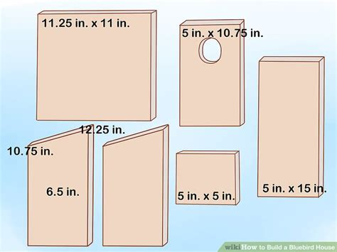 build  bluebird house  pictures wikihow