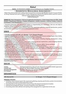 Testing Sample Resumes  Download Resume Format Templates