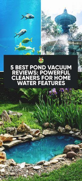 5 Best Pond Vacuum Reviews Powerful Cleaners For Home