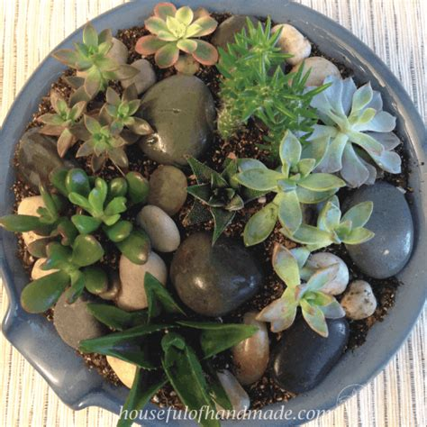 easy indoor succulent rock garden houseful  handmade