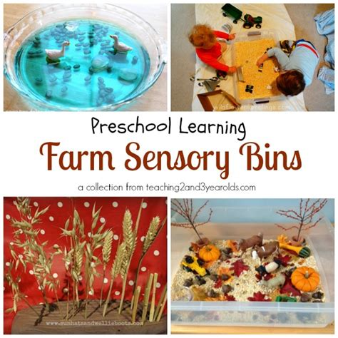preschool farm theme 731 | farm sensory bins