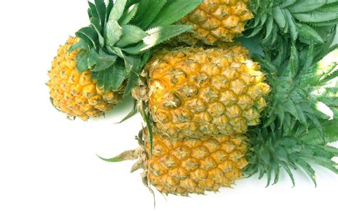 Animated Pineapple Wallpaper - pineapple desktop wallpapers this wallpaper