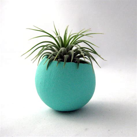 mini air plant container pod aqua by seaandasters on etsy