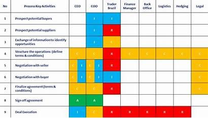 Raci Matrix Authority Raw Sample Process Chart
