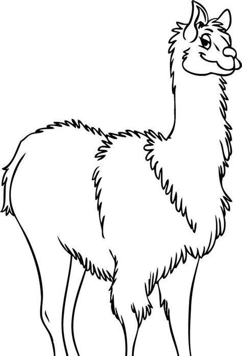 llama coloring pages    print