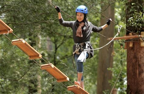 mojosemi forest park wahana wisata alam  magetan