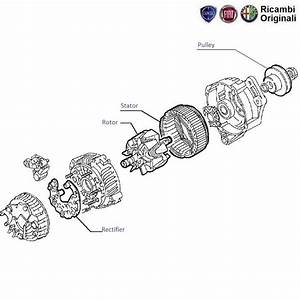 Fiat Palio Stile 1 3mjd  Alternator Components