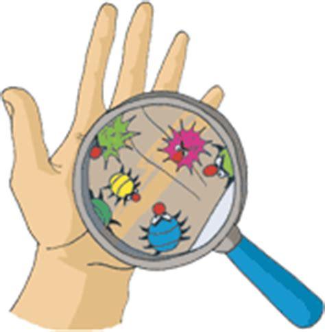 exercice cap cuisine lavage des mains efficience santé au travail
