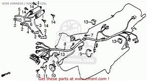 Honda Cb650sc 1982 Nighthawk 650 Usa Wire Harness