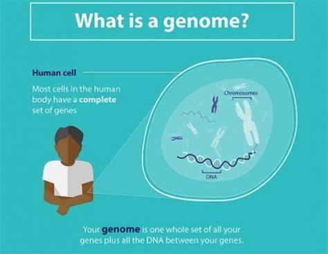 Genomics England  100,000 Genomes Project