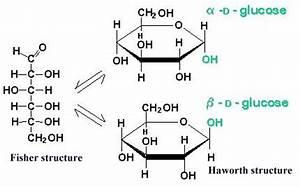 Fructose - Fischer und Haworth Projektion? (Chemie)
