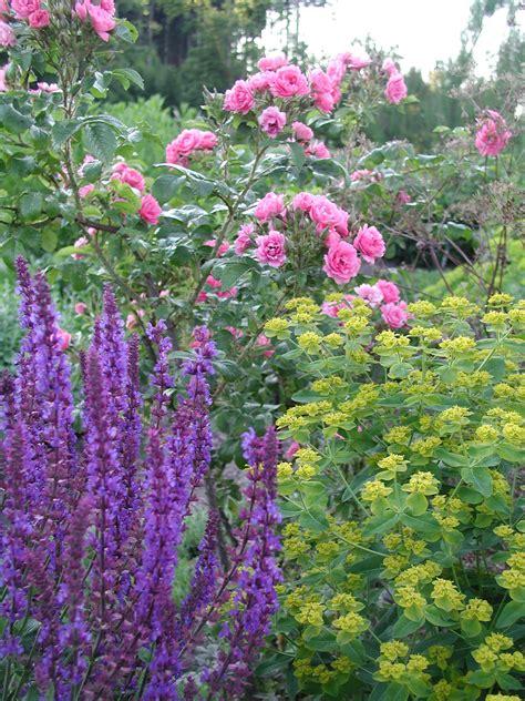 Lavendel Und Gräser by Gestalten Mit Lavendel Staudeng 228 Rtnerei Gai 223 Mayer