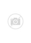 German star fit in...