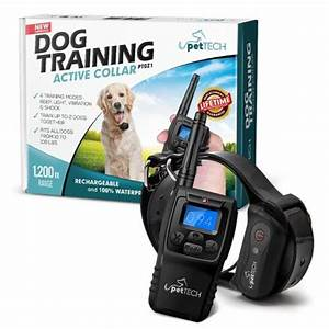 best dog training collar 2017 2017 top reviews us18 With best dog training sites