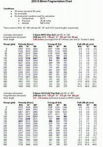 223  5 56 Ballistics Chart