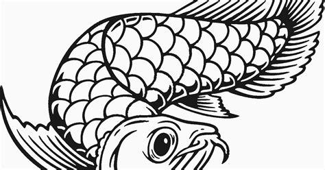 gambar mewarnai ikan arwana  anak anak contoh anak paud