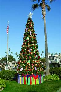 Outdoor, Christmas, Trees, -, Ideas, For, Display, And, Decor
