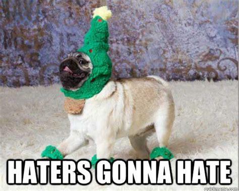Christmas Animal Meme - 20 awesome christmas memes dust off the bible