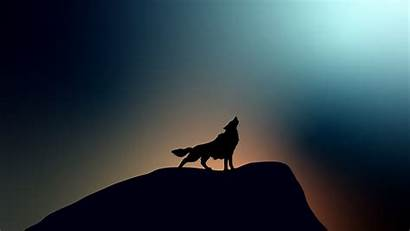 Wolf Howling 4k Wallpapers 1080p Laptop Resolution