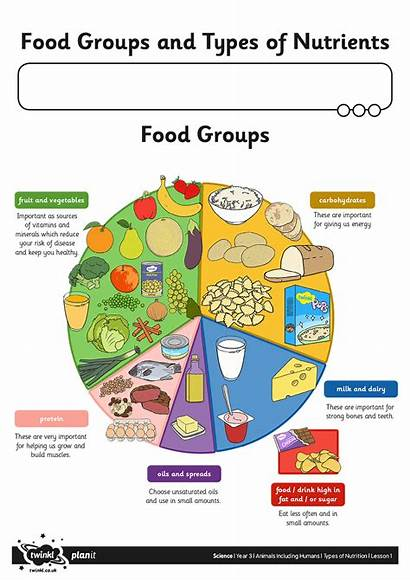 Healthy Eating Plate Eat Well Focusing