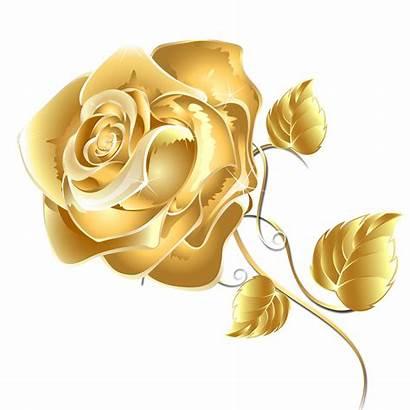 Rose Flowers Flower Clipart Transparent Flores Golden