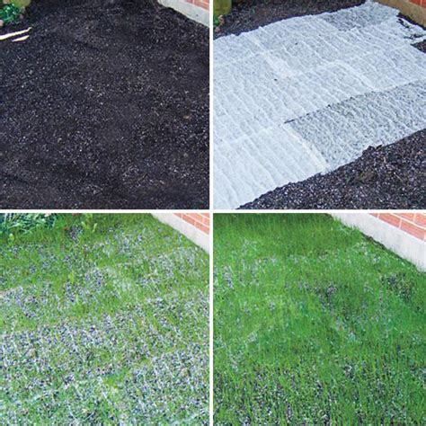 straw matting for grass seeding turf alive iii with rhizomes lawn mat