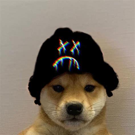Pin By Jonathan Carrisoza On Dog Wif Hat Dog Icon Dog