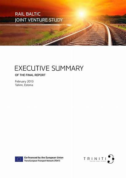 Summary Executive Example Examples Report Final Samples