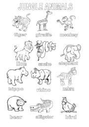 Related Keywords & Suggestions for jungle animals activities