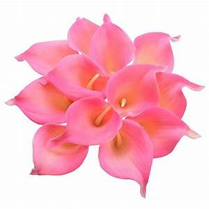 Silk Tropical Flowers: Amazon com