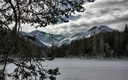 Forest Snow Winter Desktop Mountains Tree