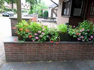 Hochbeet Blumen Bepflanzen : kr uter blumen gem se die richtige bepflanzung f r ihr hochbeet ~ Watch28wear.com Haus und Dekorationen