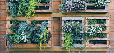 Try Vertical Gardening To Brighten Up Small, Dreary Spaces