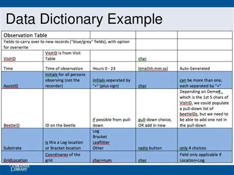 data dictionary template data dictionary exle by estrella gallegos