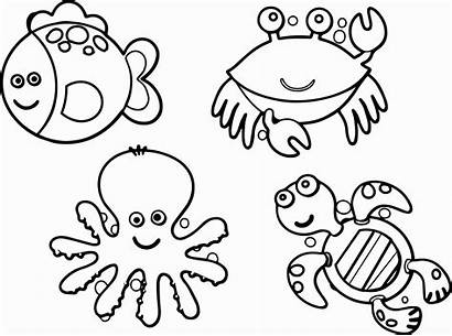 Coloring Animal Pages Sea
