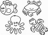 Coloring Animal Pages Sea sketch template