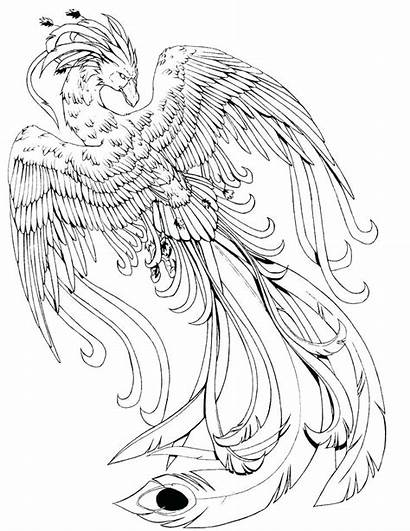 Creatures Coloring Pages Magical Mythical Colouring Printable