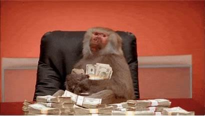 Monkey Baboon Market Cash Land Investment Million