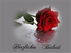Trauer Blumen Bilder : kostenlose grusskarten trauer ~ Frokenaadalensverden.com Haus und Dekorationen