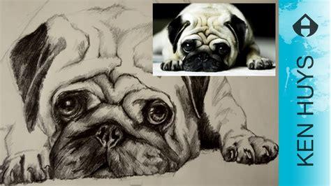hoe teken je een hond   draw  real dog english  youtube