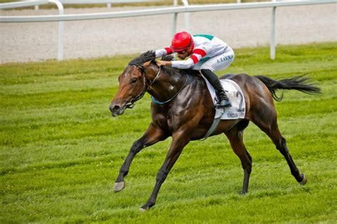 racing horse betting