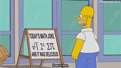 Simpsons Homer Math Simpson Giphy Gifs Numbers